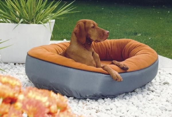 lit-pour-chien-partie-basse-étanche
