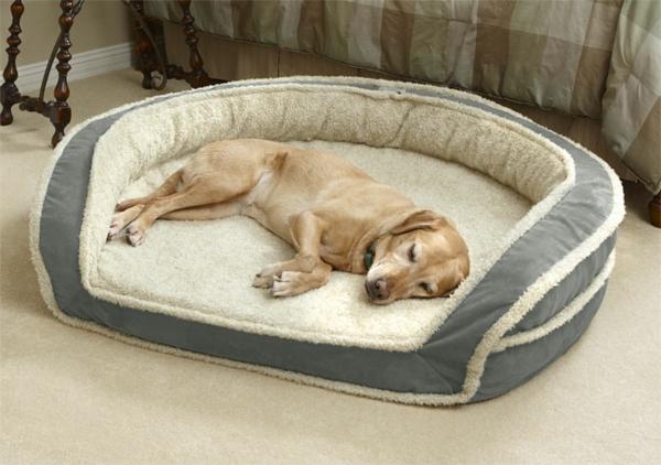 lit-pour-chien-un-lit-confortable