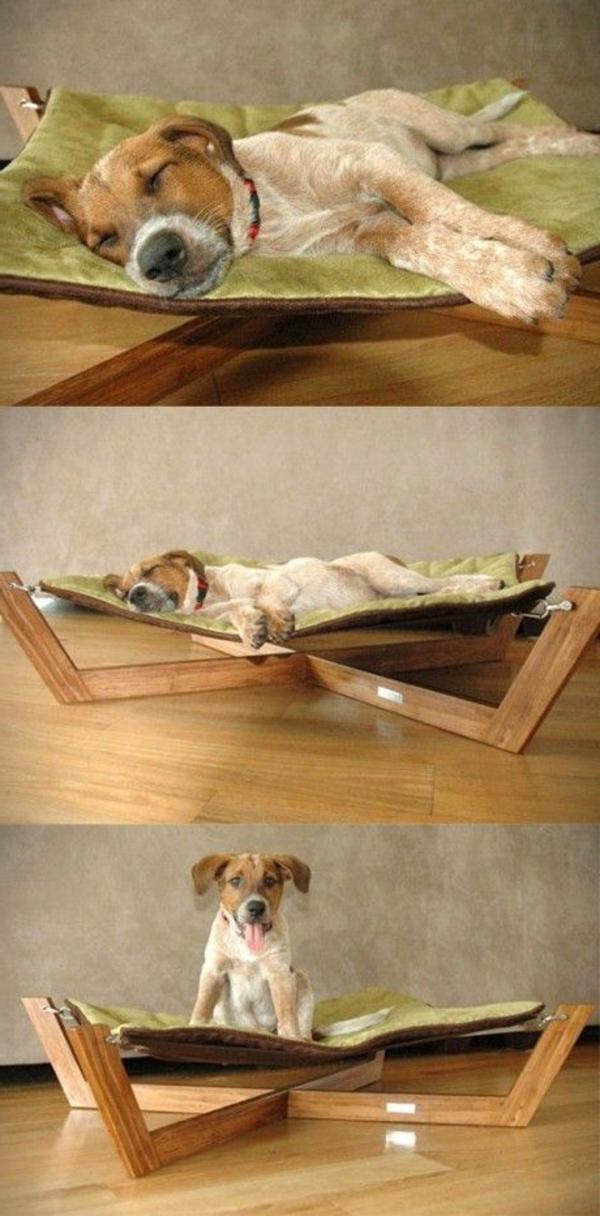 lit-pour-chien-un-lit-hammac