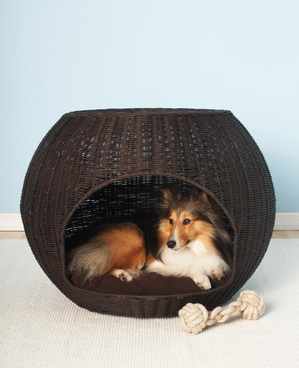 lit pour chien en osier, un lit corbeille