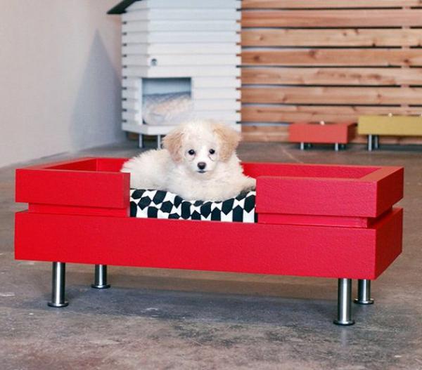 lit-pour-chien-un-lit-rouge-rectangulaire