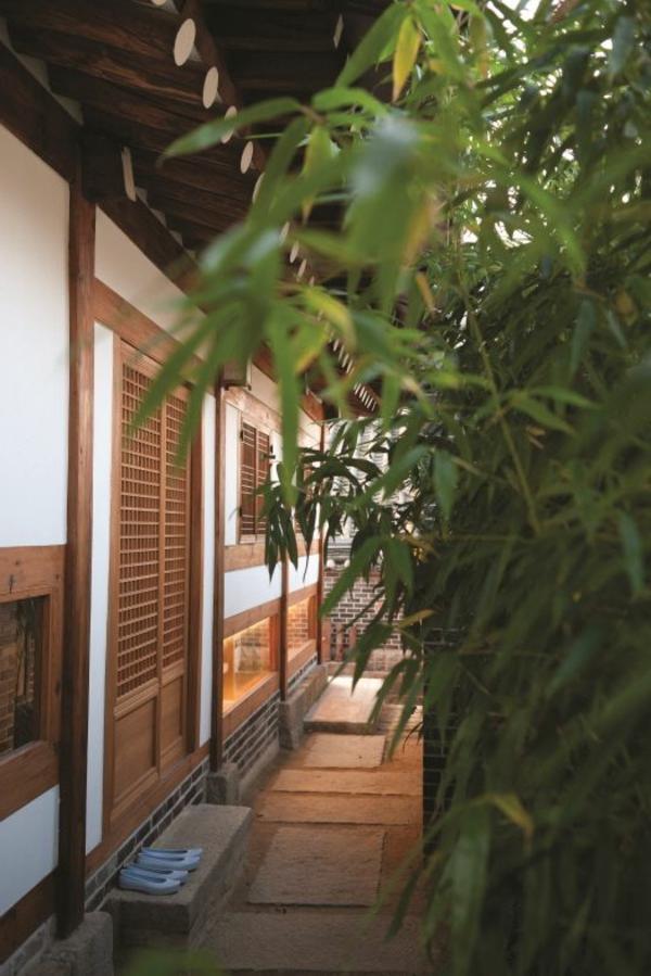 maison-japonaise-plantes-vertes