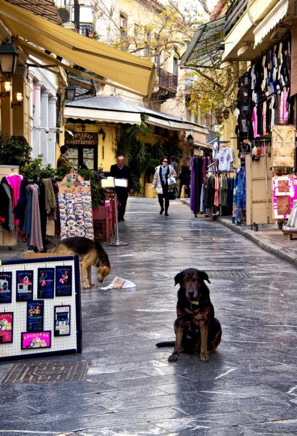 marché-grecque