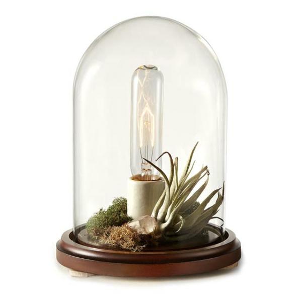 mini-jardin-zen-déco-créative