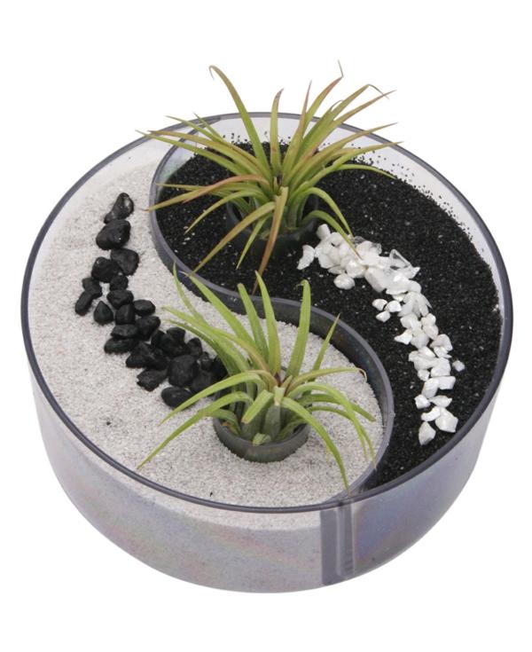 Le mini jardin zen d coration et th rapie for Jardin yin yang