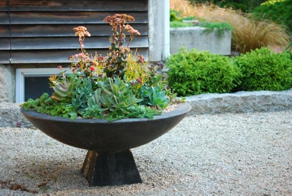 Petit jardin zen exterieur exemple de jardin zen for Arbuste pour jardin zen