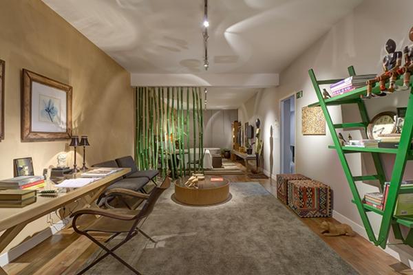 salon-vert-salle-de-séjour-échelle-au-rebours-étagère