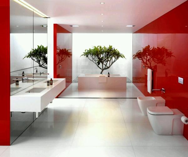 vasque-rectangulaire-baignoire-en-céramique-vasque-flottqnte-un-petit-bonsai