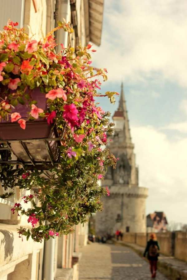 1-les-plus-belles-villes-de-france-la-rochelle-fleurs