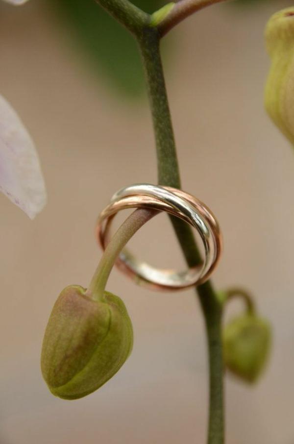 6-Bague-de-mariée-avec-trois-anneaux-plante