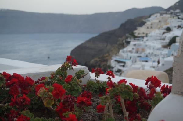 L'ile-de-Santorin-vacances-merveilleuses-plage-fleurs