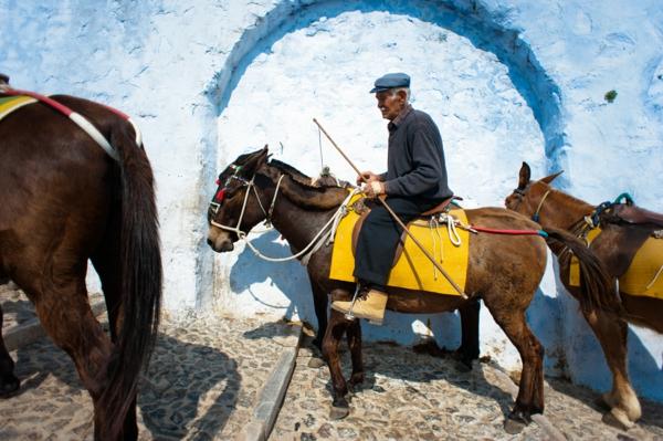 Old_donkeyman_of_Santorini_Mule_Path_Santorini_island_(Thira),_Greece_(full_length_portrait)-resized