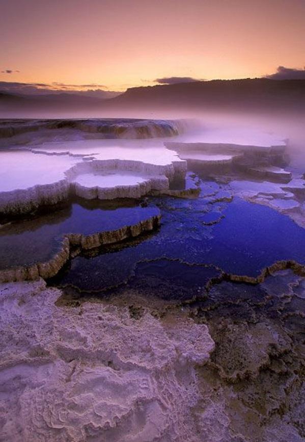 Source-d-eau-chaude-violet-jolie-vue