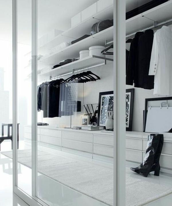 armoire-porte-en-verre