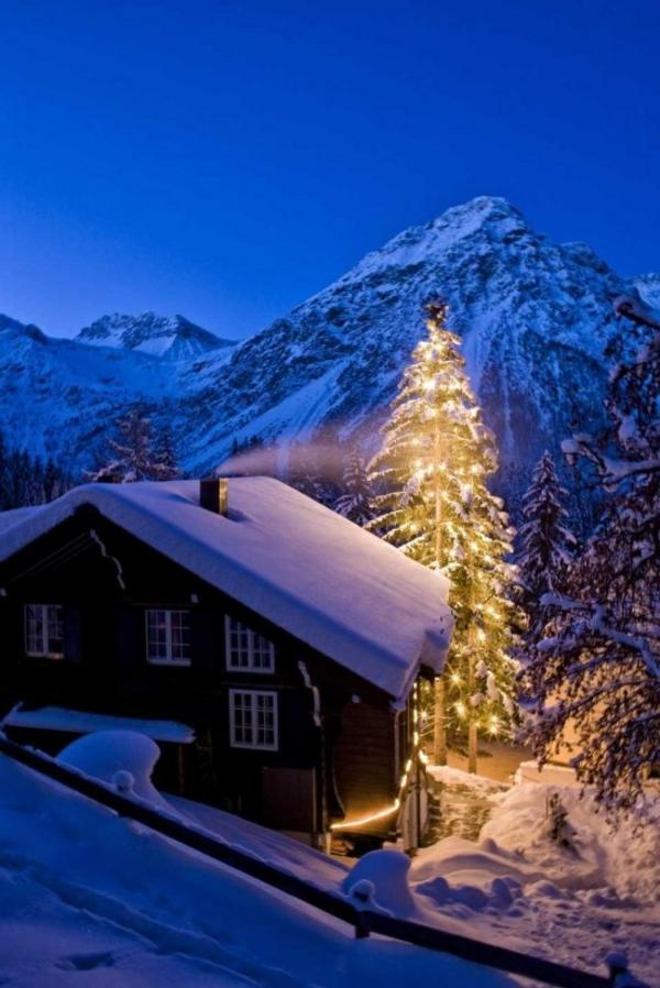 chalet-suisse-et-pin-de-Noel
