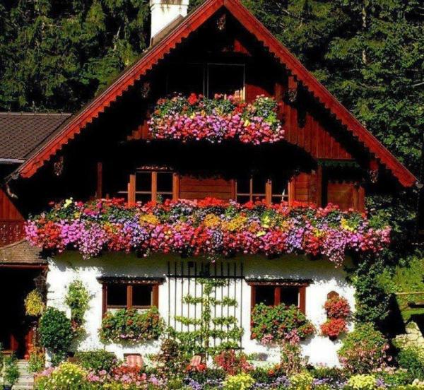 chalet-suisse-façade-en-jolies-fleurs