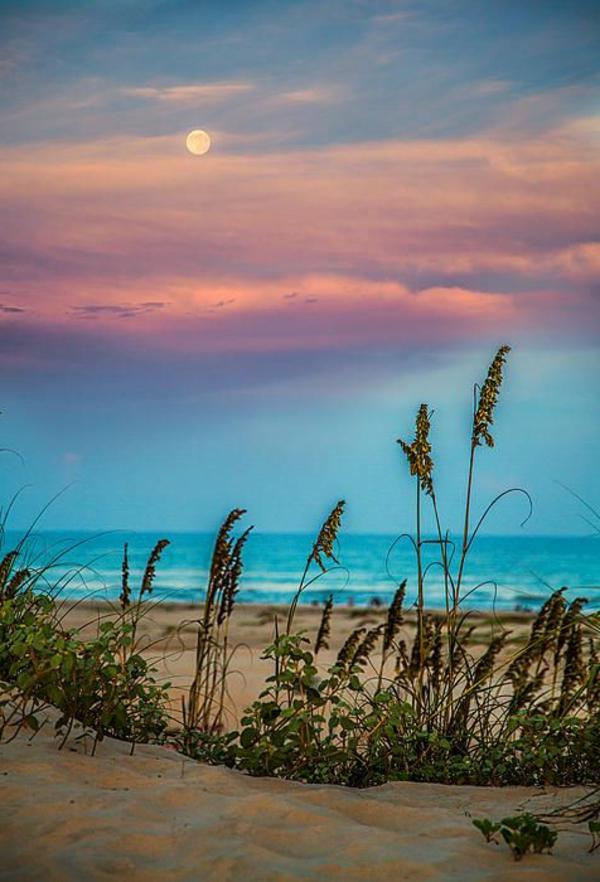 couche-de-soleil-plage-sauvage
