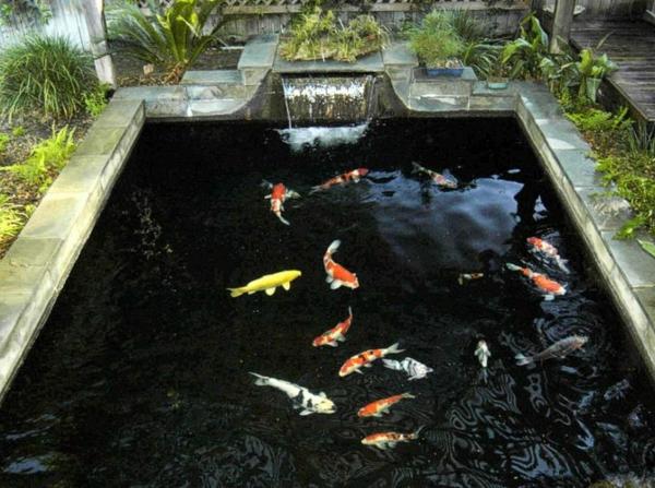 D coration de jardin avec une fontaine pour bassin for Poisson rouge en bassin exterieur