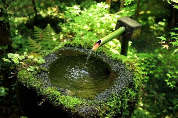 D Coration De Jardin Avec Une Fontaine Pour Bassin