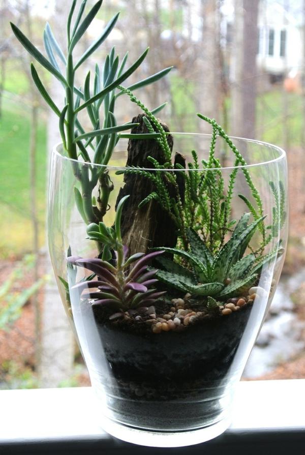 inspiration-déco-chambre-plantes