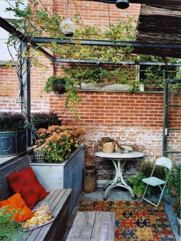 jardin-ancien-vintage-vigne