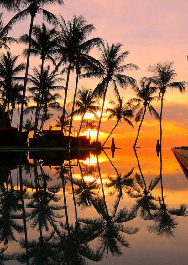 le-coucher-du-soleil-sur-la-mer