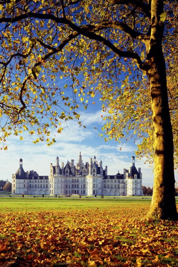 les-châteaux-de-la-Loire-Chambord-en-automne