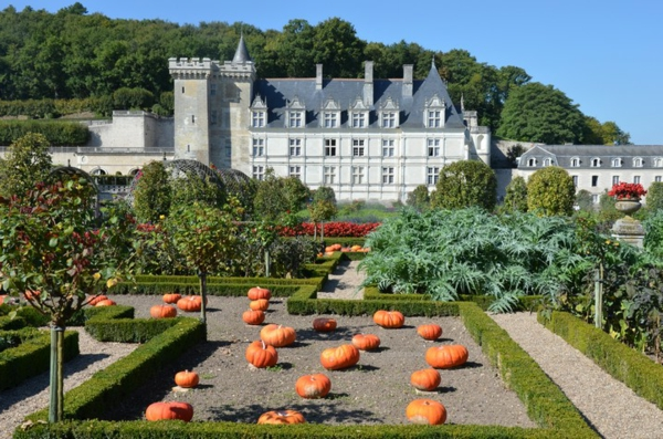 les-châteaux-de-la-Loire-le-fameux-potager-de-Villandry