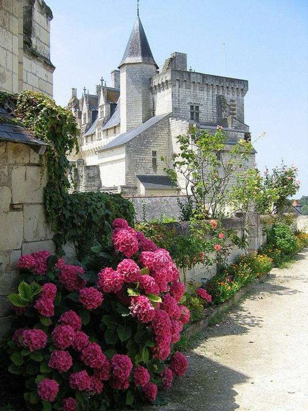les-châteaux-de-la-Loire-vue-splendide-vers-le-château