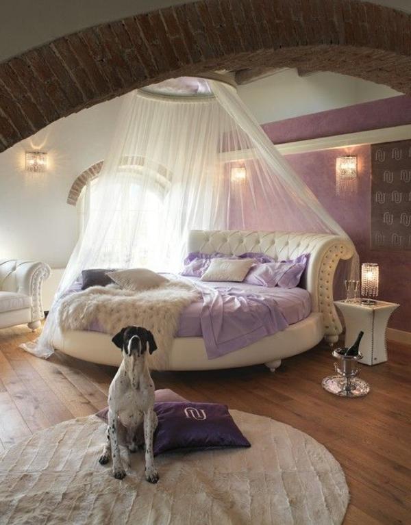 lit-adulte-avec-rideau-chien-chambre