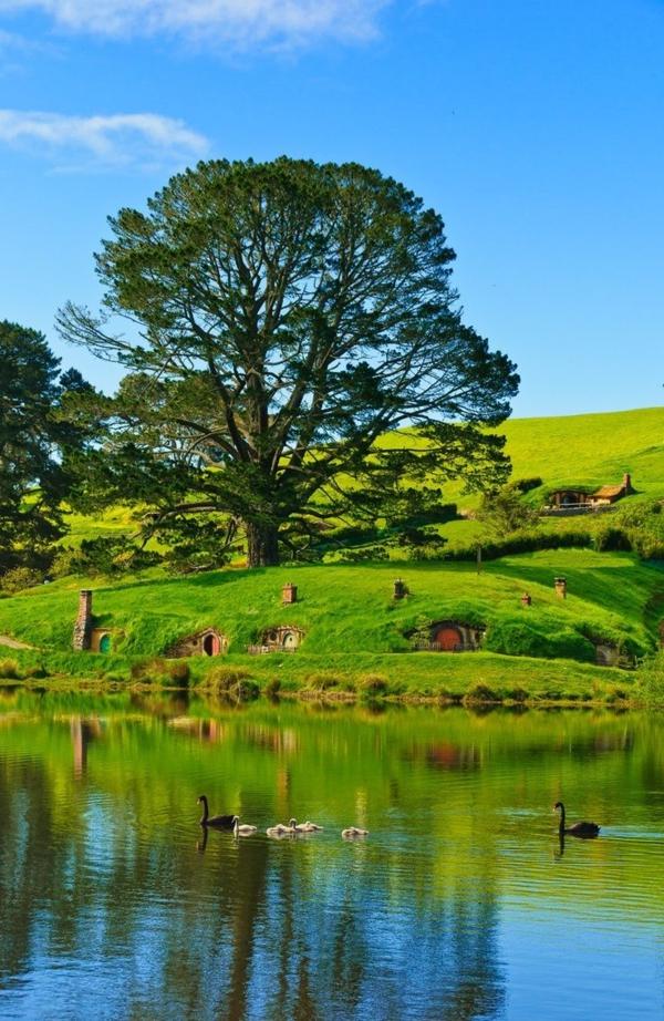 maison-de-hobbit-paysage-fantastique-de-Hobitton