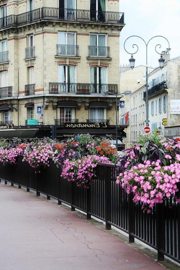 paris-france-rue-fleurs-violet