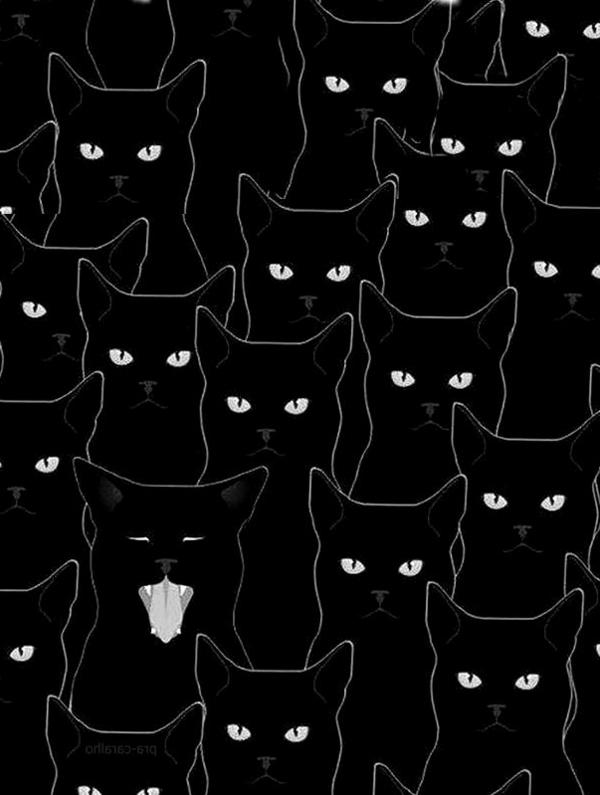 peindre-sur-du-papier-sur-les-murs-les-chats-noirs