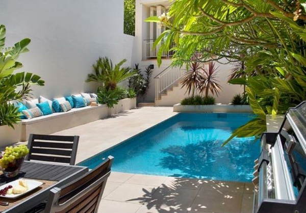 petite-piscine-hors-sol-plantes-tropicales