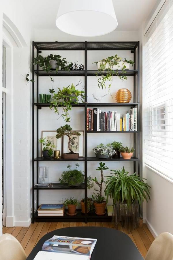 rénover-appartement-plantes