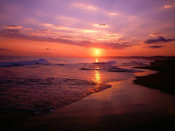 rouge-photo-soleil-couchant-photo-jolie
