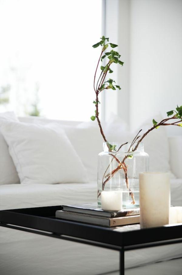 table-basse-plantes-vertes-fleurs