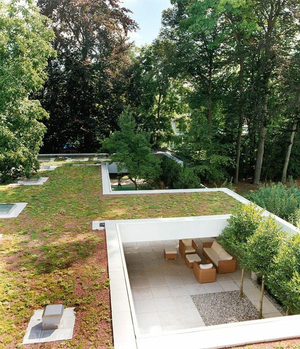 toit-végétal-idées-créatives-vertes