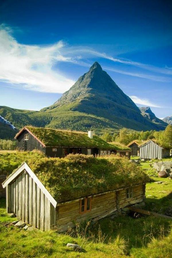Le toit v g tal en 77 photos - Maison en pleine nature ...