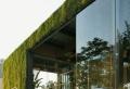 Le toit végétal en 77 photos