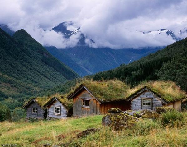 toit-végétal-endroits-magiques-du-monde