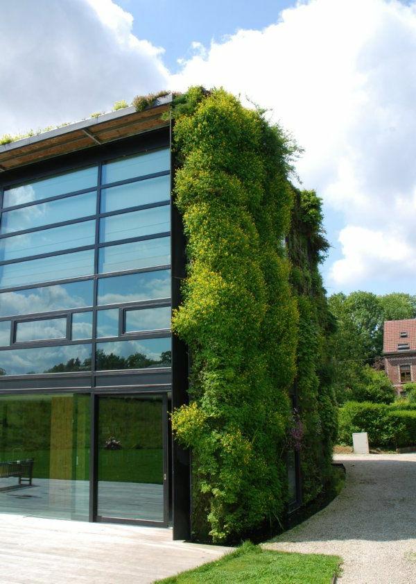 toit-végétal-et-jardin-vertical