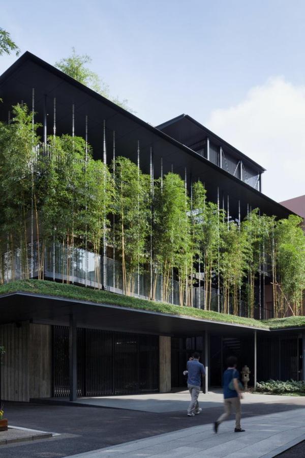 toit-végétal-idées-uniques-d'architecture-verte