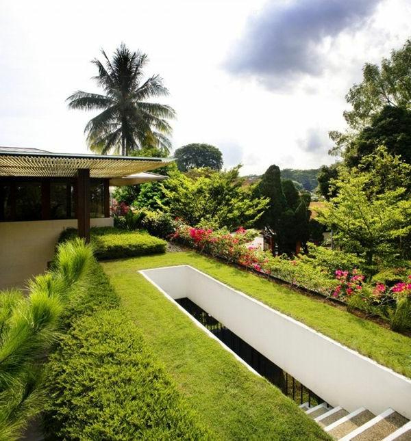 toit-végétal-jolie-pelouse-sur-le-toit