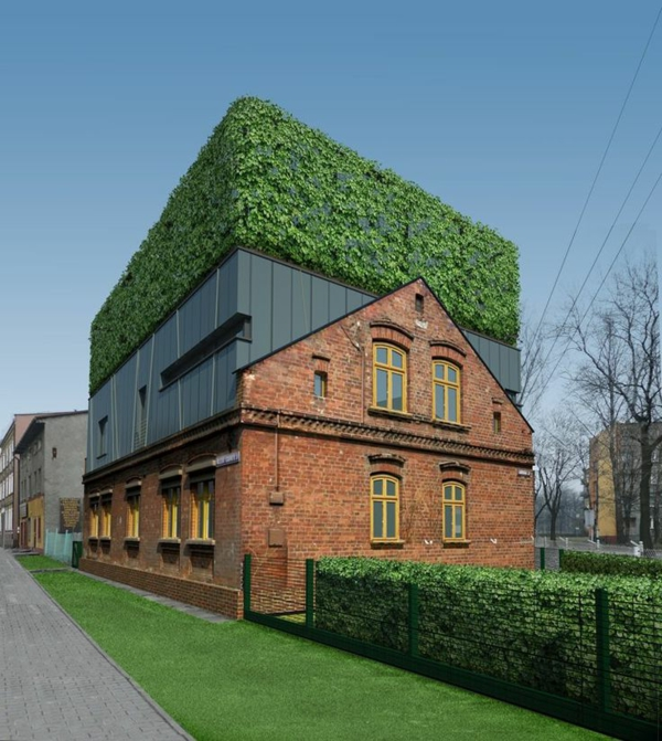 toit-végétal-jolies-maisons-écologiques