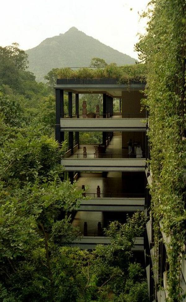 toit-végétal-jolis-bâtiments-verts