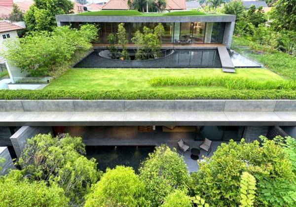 toit-végétal-maison-moderne-en-béton-avec-le-toit-végétalisé