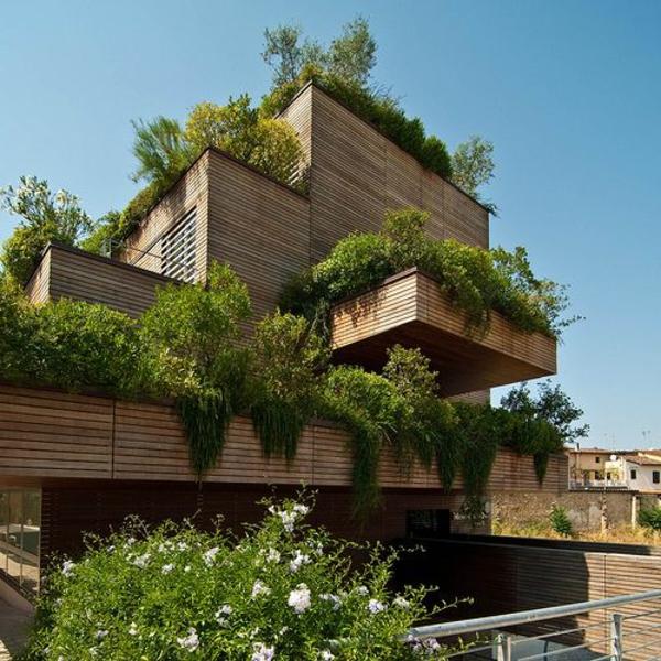 toit-végétal-maison-moderne-et-architecture-verte
