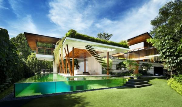 toit-végétal-maison-moderne-piscine-spectaculaire