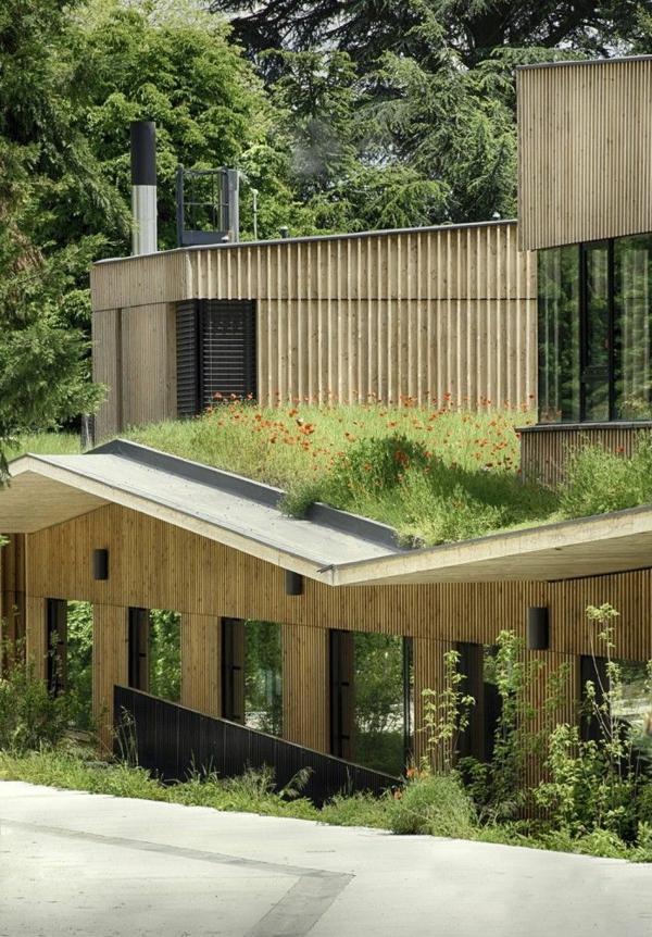 toit-végétal-maison-originale-et-toit-vert